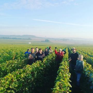 Team de choc 💪  #champagnedelaunoischanez #rillylamontagne #champagne #montagnedereims #vendanges2021 #harvest2021 #hve #vignoblechampenois #allezlens #chtis #vendangeschampagne2021