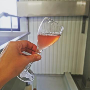 🍇 Vendanges 2021 🍇 C'est parti pour les meuniers !  #champagnedelaunoischanez #rillylamontagne #champagne #pinotmeunier #vendanges2021 #vignoblechampenois #instachampagne #instawine #degenerationengeneration #montagnedereims #champagnelover #champagnedevignerons #vigneronsindependants #hve #cuverie #premiercru