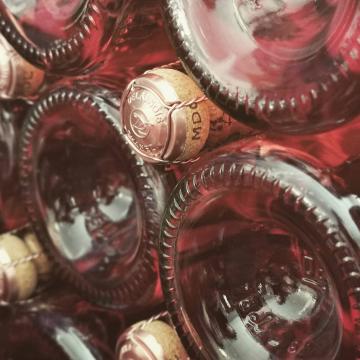 Qui fait bientôt son retour ? 😍❤️😍  #champagnedelaunoischanez #rillylamontagne #champagne #vigneronsindependants #champagnedevignerons #hve #recoltantmanipulant #montagnedereims #champagnelover #pinotnoir #chardonnay #pinotmeunier #champagnelife #champagnerosé